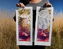 Printmaking   Serigraphy