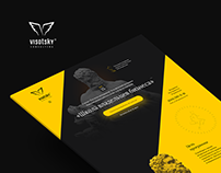 Landing page for Visotsky Consulting