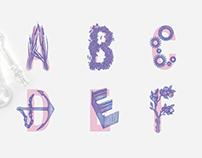 JSTOR, Academia Alphabet