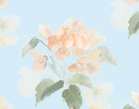 Euphoric Rose
