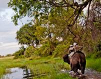 Okavango I