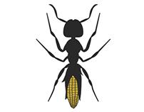 Icon/Logo Project