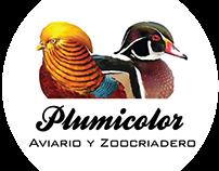 Plumicolor