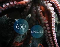 Aquarium of the Pacific: Donor iPad App