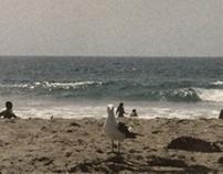 ZUMA BEACH Series