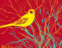 Illustration - Amazon Birds