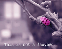 This is not a LadybAg