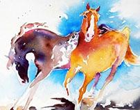 Watercolor Horse Paintings