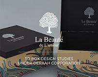 3d Box Design Studies
