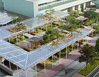 """Landscaping """"Green bazaar"""""""