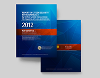 Report on Citizen Security in the Americas