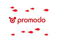 For Promodo!