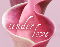 Tender Love eBook Cover - $50