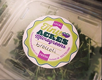 Tiny Acres Microgreens