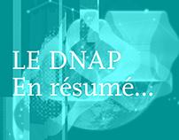 LE DNAP en resumé... (3ans d'études)