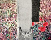 rso196, development (handmade collage)