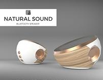 Natural Sound - Speaker Project