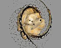 Gold Spitter