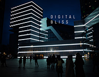 DIGITAL BLISS | Mapping