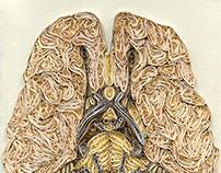 brain paper art