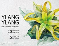 Watercolor Ylang Ylang collection