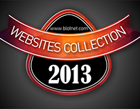 Websites Collection 2013
