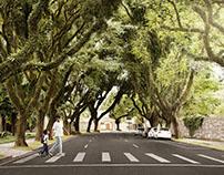 Double Check SETRAN - Prefeitura de Curitiba