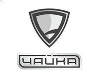 Automobile brand of Ukrainian electric cars The Seagull