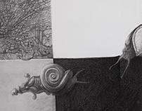 Snail_detail_snail