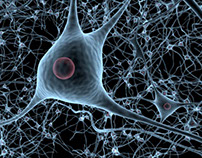 Neuronet 360