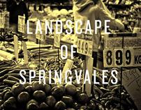 Landscape of Springvales