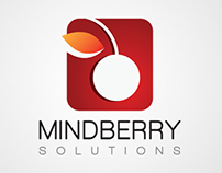 Mindberry Solutions Group