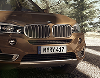 BMW X5 - BROWN
