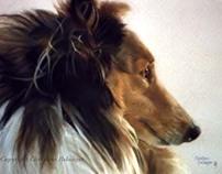 Pet Portraits by Christine Belanger