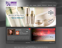 Corporate Web Design: Amega Global