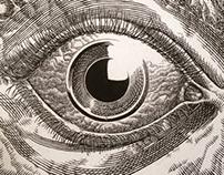 Noise for eyes
