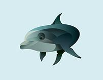 Dolphin/Kangaroo