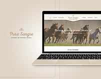 Pura Sangre | Responsive Web Design