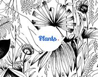 PLANTS - UI & UX inspiration for mobile app