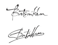 Signatures Sketches