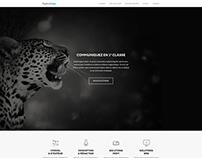 Proposition Agence Vega Website