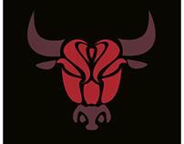 Chicago Bulls X Derrick Rose concept