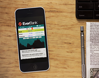 EverBank Mobile Design