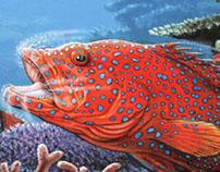Ocean food chains.
