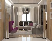 Private Apartment, Saint-Petersburg 2011
