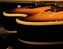 Viola Bass by Gibson
