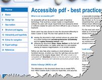 Accessible pdf: Best Practice