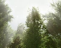 Lidl A Pilisert - Saguaro