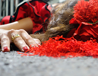 DEATH OF A FLAMENCA