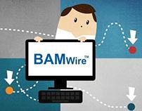 BAMwire Explainer